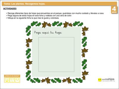 Tipos de hojas ficha de conocimiento del medio - Fichas de plantas para ninos ...