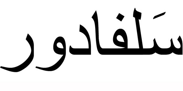 Nombre Salvador en Árabe