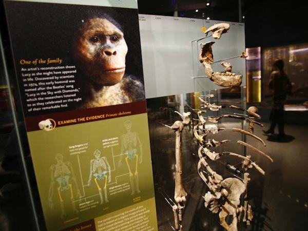 2304-museo-de-la-evolucion-humana.jpg