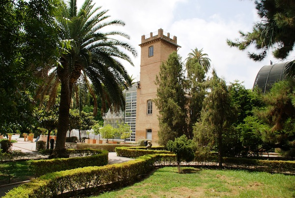 Jard n bot nico de la universidad de valencia - Jardin botanico valencia ...