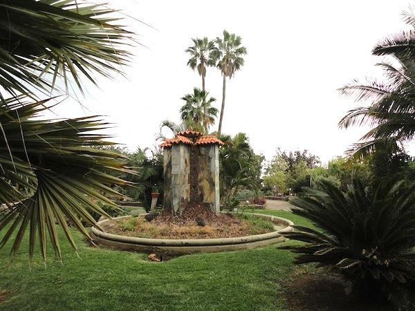 Parque bot nico de maspalomas las palmas de gran canaria - Jardin botanico las palmas ...