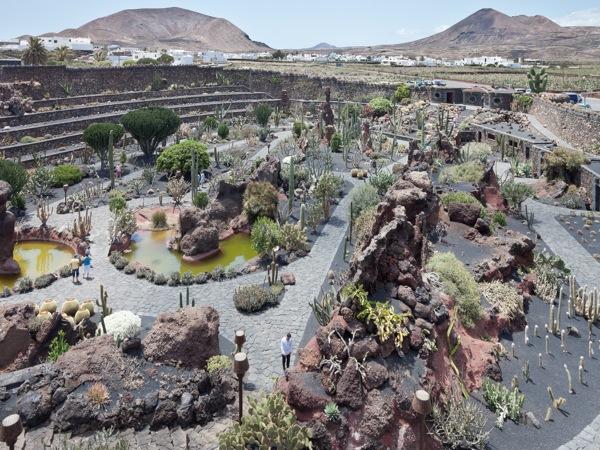 Jard n de cactus en lanzarote las palmas de gran canaria for Jardin de cactus lanzarote