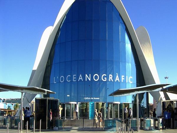 L 39 oceanogr fic valencia for Oceanografic valencia