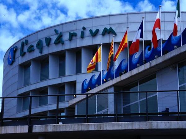 Aqu rium barcelona for Aquarium de barcelona
