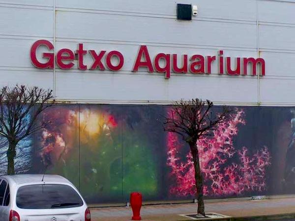 getxo aquarium en bilbao en getxo vizcaya