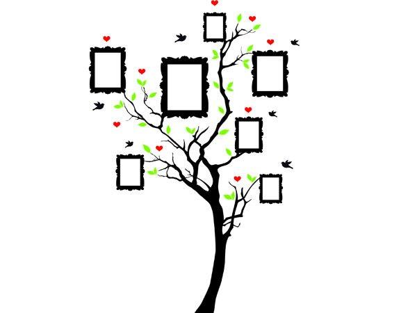 Árbol genalógico con marcos