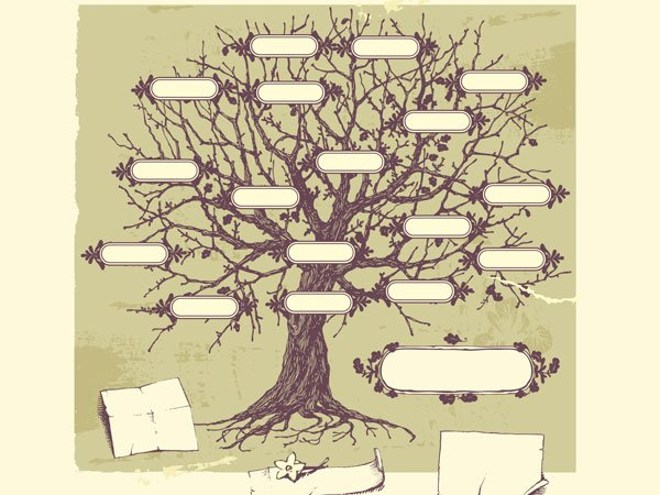 Rbol geneal gico cl sico - Diseno arbol genealogico ...