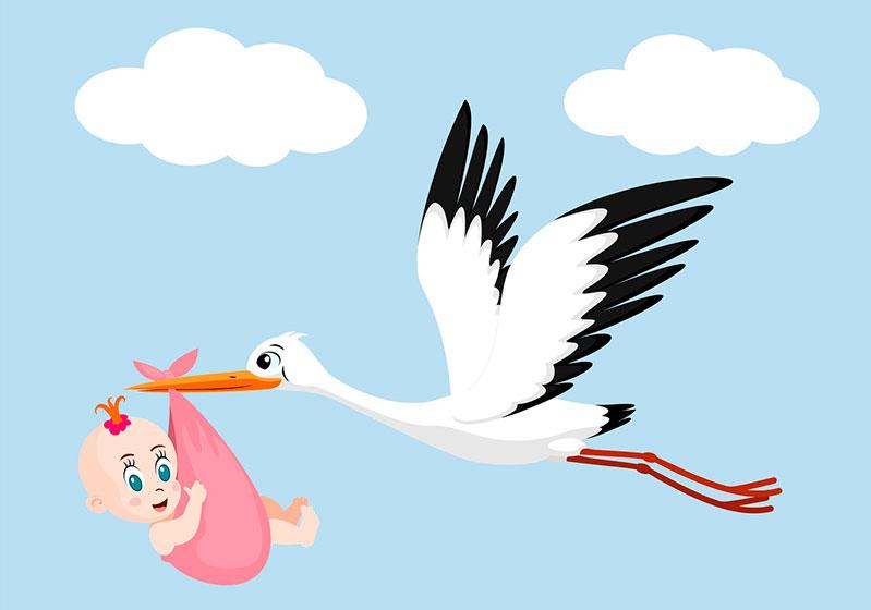Postales Para Anunciar El Nacimiento Del Bebé
