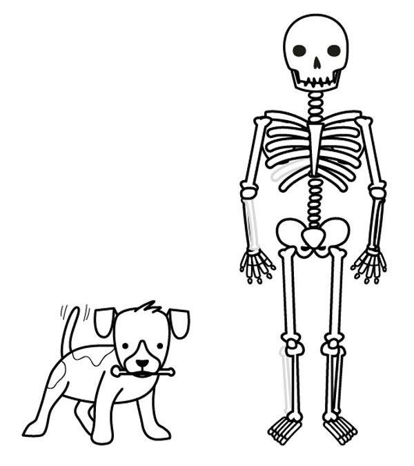 Esqueleto deshuesado.: dibujo para colorear e imprimir