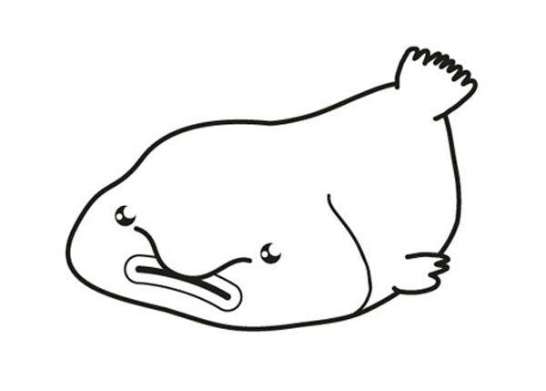Blobfish: dibujo para colorear e imprimir
