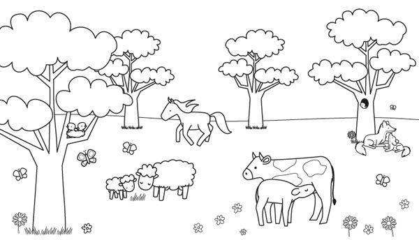 Animales en el campo: dibujo para colorear e imprimir
