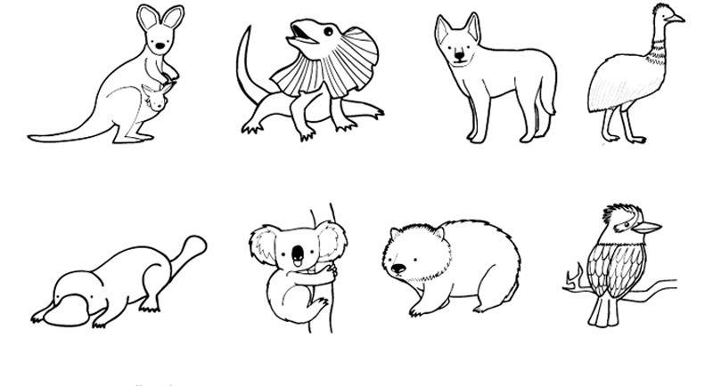 Animales de Australia: dibujo para colorear e imprimir