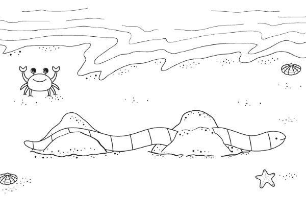 Serpiente coral: dibujo para colorear e imprimir