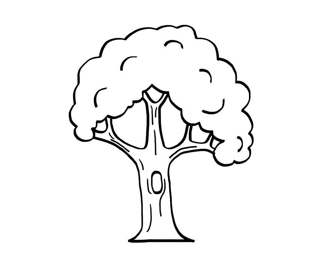 árbol Dibujo Para Imprimir Y Colorear