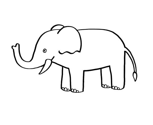 Dibujo Elefante Para Colorear E Imprimir