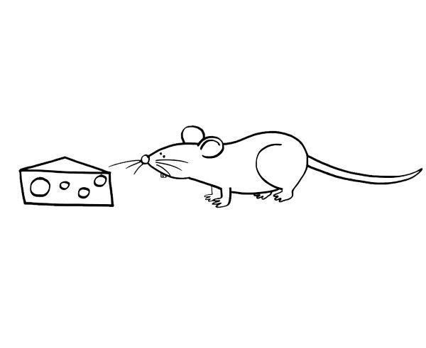 Ratón con queso: dibujo para colorear e imprimir
