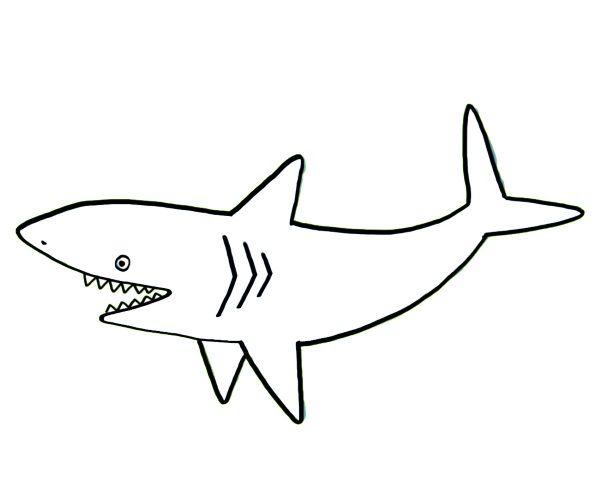 Tiburón: dibujo para colorear e imprimir