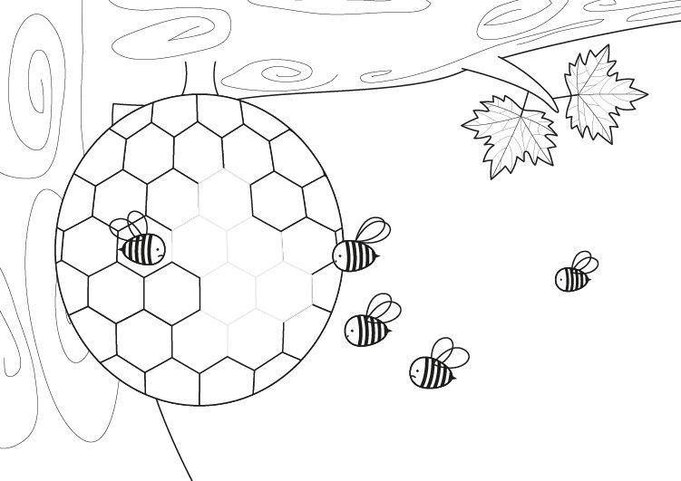Panal de abejas: dibujo para colorear e imprimir