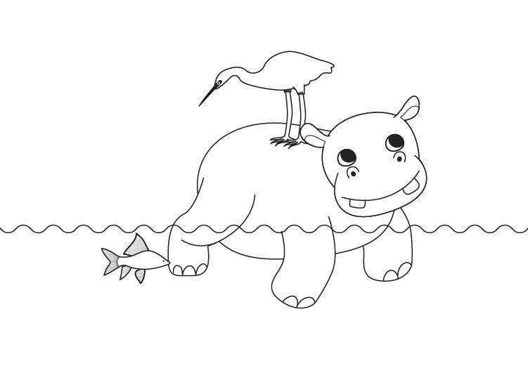 Hipopótamo: dibujo para colorear e imprimir