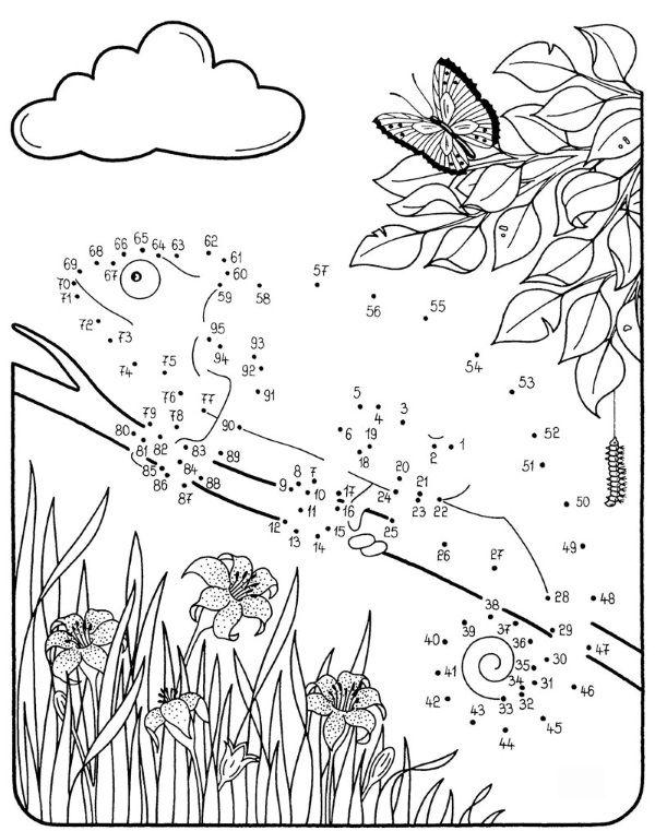 Dibujo de unir puntos de camaleón: dibujo para colorear e imprimir
