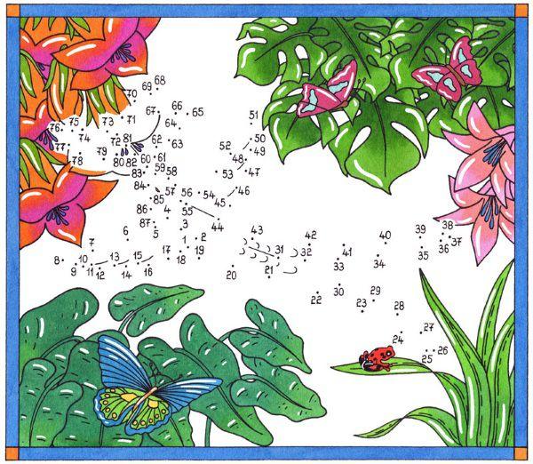 Dibujo de unir puntos de un colibrí y mariposa: dibujo para colorear e imprimir