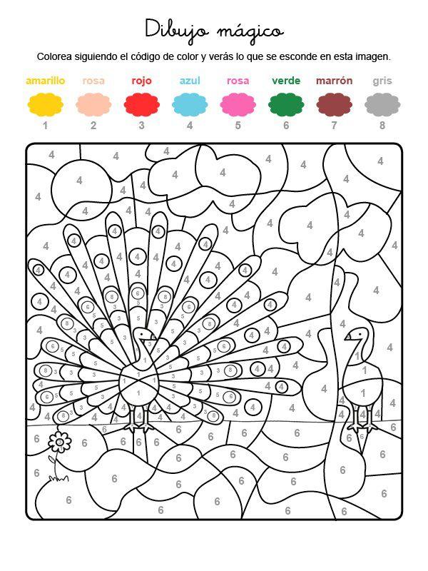 Dibujo mágico de pavo real: dibujo para colorear e imprimir