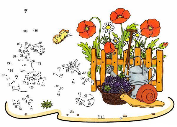 Dibujo de unir puntos de amapolas: dibujo para colorear e imprimir
