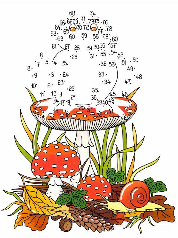 Dibujo de unir puntos de rana y champiñón en color: dibujo para colorear e imprimir
