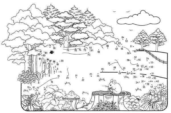 Dibujo De Unir Puntos De Una Liebre En El Bosque Dibujo