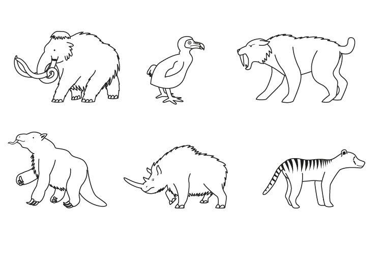 Dibujos De Animales Terrestres Para Colorear E Imprimir: Animales Desaparecidos: Dibujo Para Colorear E Imprimir