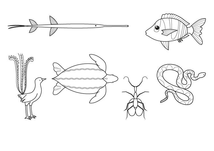 Animales musicales: dibujo para colorear e imprimir