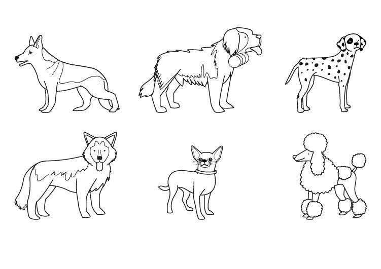 Dibujo De La Palabra Otoño Para Colorear Con Los Niños: Razas De Perros: Dibujo Para Colorear E Imprimir