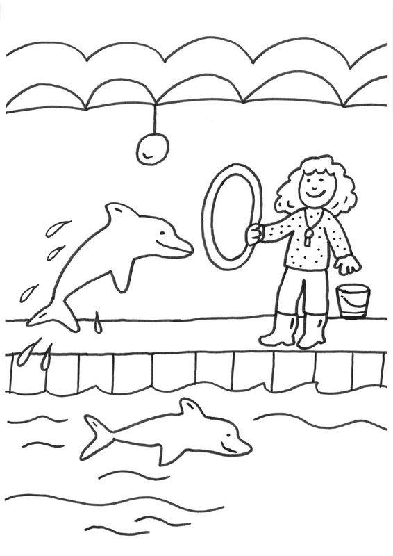Delfín Y Adiestradora Dibujo Para Colorear E Imprimir