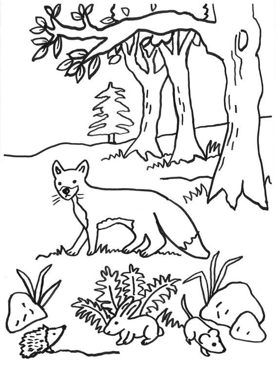 Imprimir: Un zorro y roedores: dibujo para colorear e imprimir