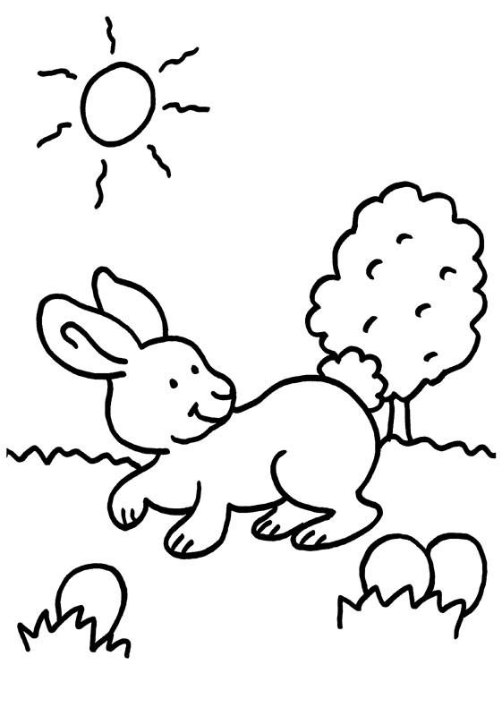 Conejo en el campo: dibujo para colorear e imprimir
