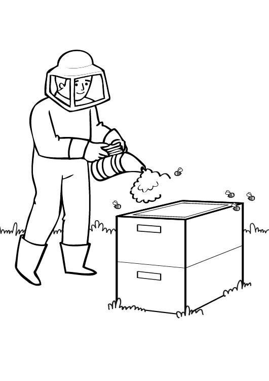 apicultor dibujo para colorear e imprimir
