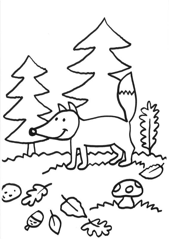 Dibujo para colorear de un zorro en el bosque junto a los pinos