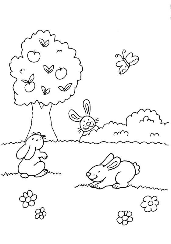 Dibujo para colorear de conejos y mariposa en el campo con flores
