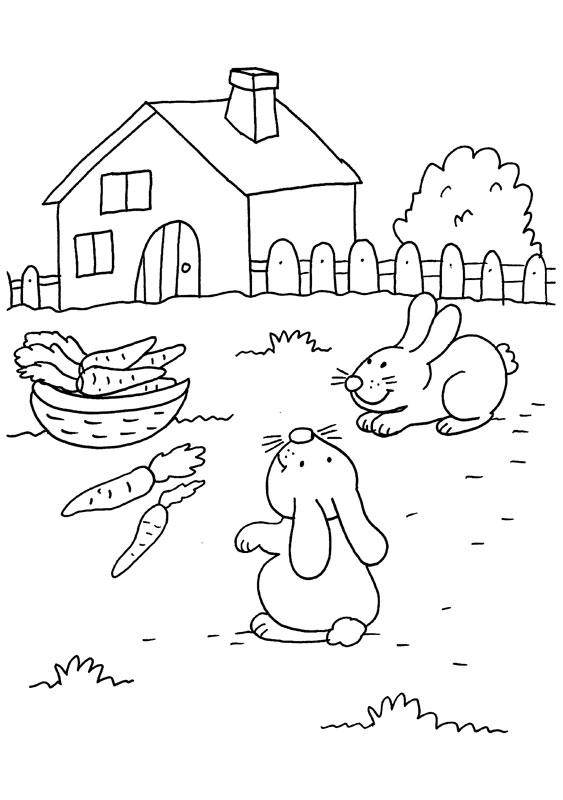 Dibujo para colorear de conejos buscanco zanahorias