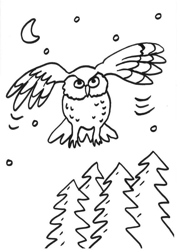 Dibujo para colorear de un búho volando