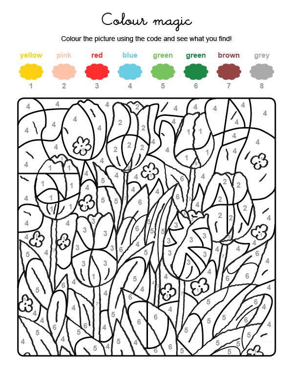 Dibujo mágico para colorear en inglés de tulipanes en el campo
