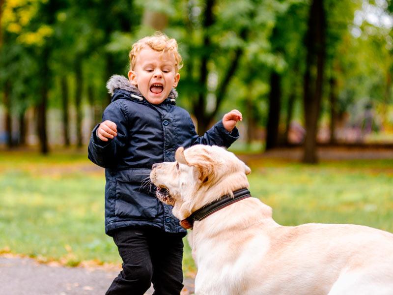 Miedo a los animales en la infancia