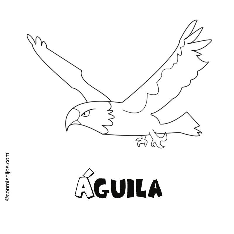 Aguila: Dibujos para colorear