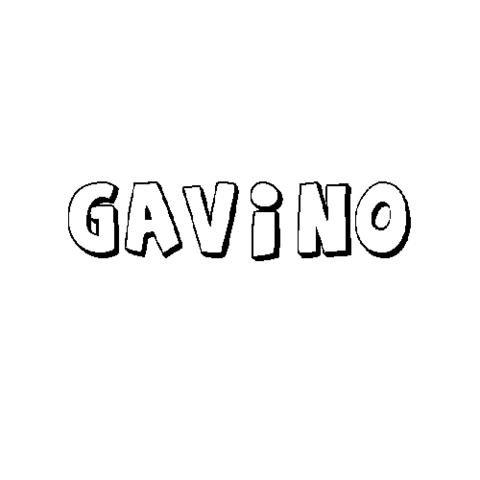 GAVINO
