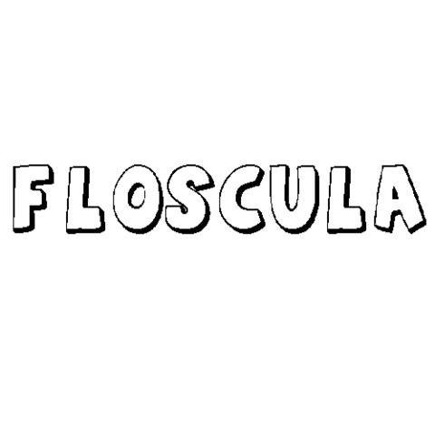 FLÓSCULA