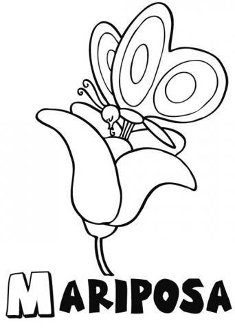 Dibujos Infantiles Para Colorear De Una Mariposa Sobre Una Flor