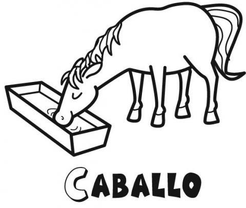 Dibujos de un caballo bebiendo agua para colorear con los niños