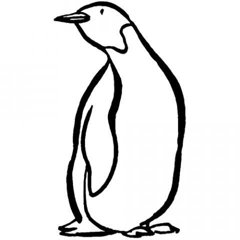 Pingüino: Dibujos para colorear