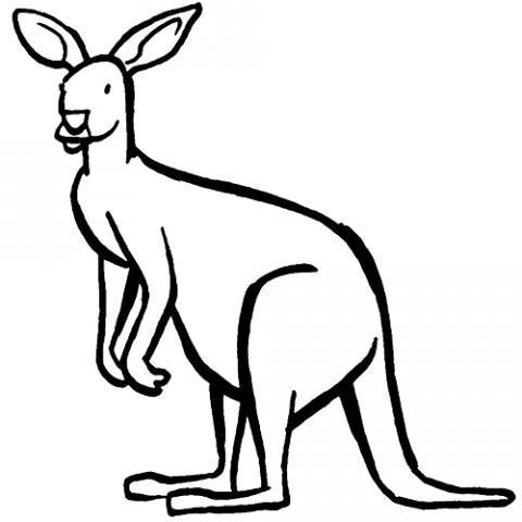 Dibujos infantiles de canguro para colorear por los niños