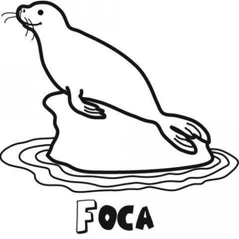 Dibujo de una foca para colorear. Imágenes gratis de animales